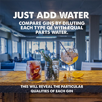 Just add water. Compare gins by diluting each type of with equal parts water. This will reveal the particular qualities of each gin.